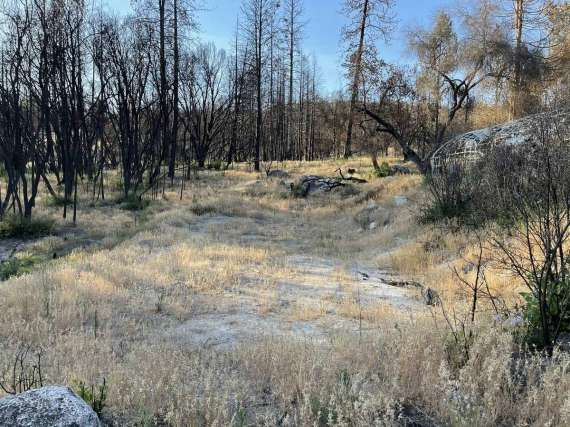 4.58 Acres with Year Round Creek, 15GPM Well, 2 miles from Lake Oroville Boat Ramp